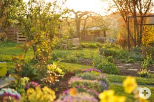 Idyllischer Blick in die Gartenanlage