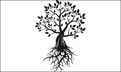 Baum mit Wurzeln - Logo der Veranstaltungsreihe MEINE WURZELN