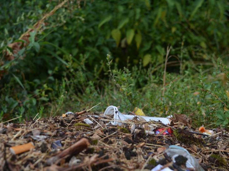 Müll mit Laub und Ästen gemischt